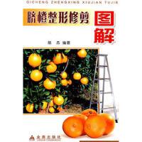 【二手旧书9成新】 脐橙整形修剪图解 陈杰著 9787508234281 金盾出版社