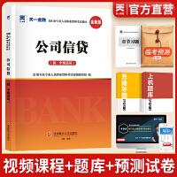 天一金融 2019银行从业资格考试 2019银行业专业人员职业资格考试专用教材:公司信贷(初、中级适用)