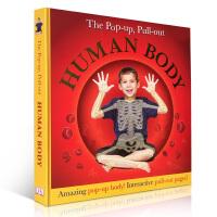 人体结构科普 Pop-Up, Pull-Out Human Body 英文原版立体翻翻书 趣味认知百科3D玩具纸板书