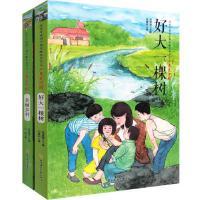 共2本改革开放四十周年献礼丛书之少年爱中国 好大一棵树+美丽乡村 9-12-14岁中小学生少儿童课外阅读经典文学故事图