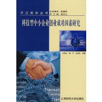 科技型中小企业创业成功因素研究