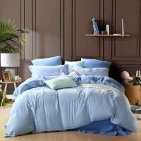 百丽丝家纺 水星出品 裸睡面料水洗工艺学生四件套床单被套 静妍