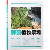藤蔓植物景观 植物造景丛书 周厚高主编 缠绕 卷须 吸附 蔓生类植物与景观设计书籍