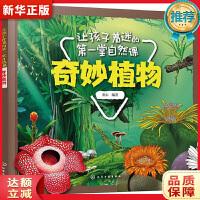 让孩子着迷的第一堂自然课――奇妙植物 童心 化学工业出版社9787122337290【新华书店 购书无忧】