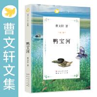 曹文轩文集-鸭宝河