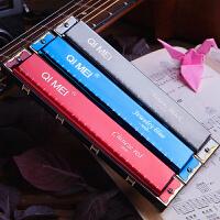 口琴24孔复音初学者 儿童学生练习口琴演奏入门C调乐器
