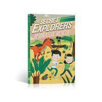 秘密探险家和侏罗纪救援行动 DK The Secret Explorers and the Archaeopteryx