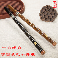 笛子乐器单插学生初学苦竹笛直笛零基础竖笛6孔竖吹葫芦