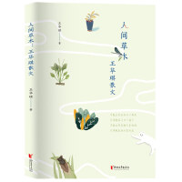 人间草木:王华琪散文