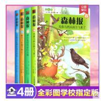 森林报春夏秋冬全四册 正版4册彩图版