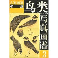 【正版现货】鸟类写真画谱3―大家画案 周彦生,刘钊 9787540107772 河南美术出版社