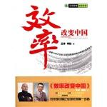 效率改变中国 王洋,李践
