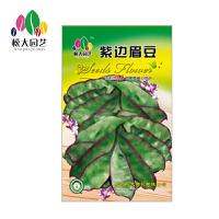 紫边眉豆 花种子(大袋)松大园艺四季种花种子盆栽四季景观花卉