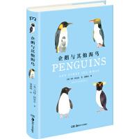 世界上的鸟儿:企鹅与其他海鸟