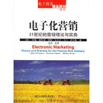 电子化营销——21世纪的营销理论与实务