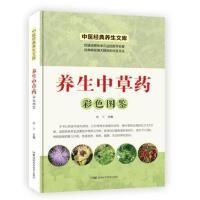 中医经典养生文库(彩图版):养生中草药彩色图鉴