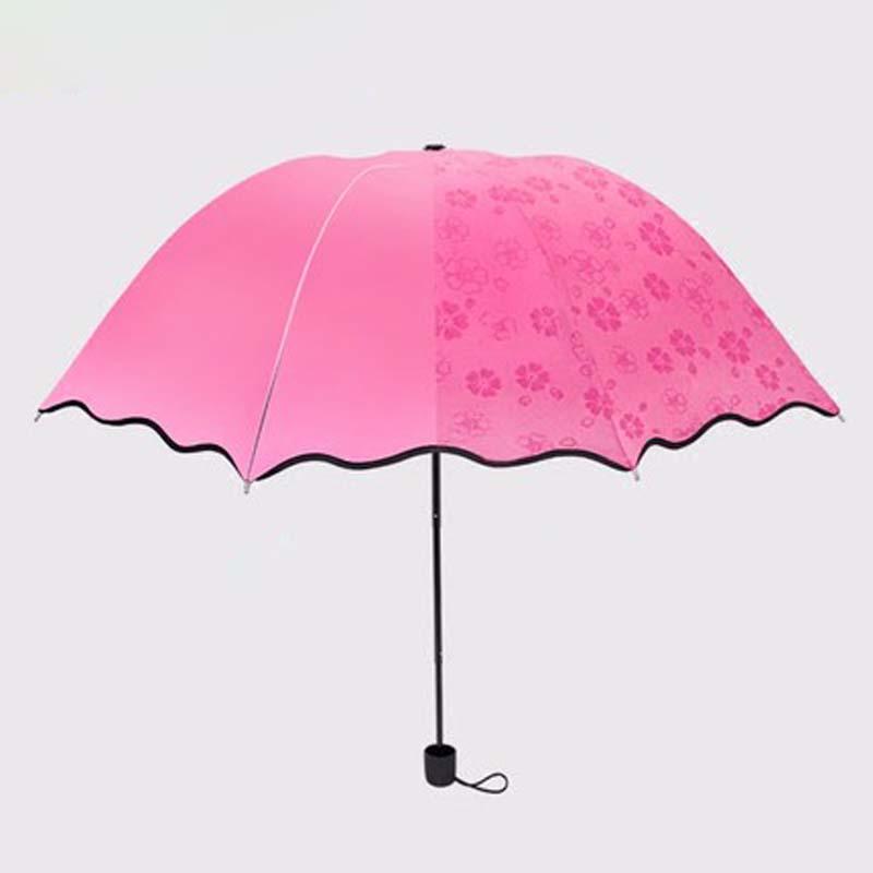 泰蜜熊遇水开花黑胶晴雨两用单人伞防晒伞黑胶伞