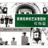 欧美经典铁艺实景图例-灯饰篇冯小川 中国建材工业出版社9787802275522