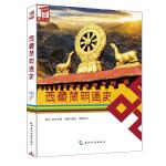 西藏简明通史(汉)