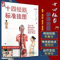 十四经筋标准挂图 吴汉卿 吴军尚 吴军瑞编著 中国中医药出版社9787513250733