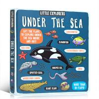 英文原版 Little Explorers Under the Sea 小探险家系列之海洋 儿童百科知识启蒙纸板翻翻书