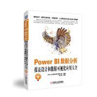 Power BI数据分析:报表设计和数据可视化应用大全
