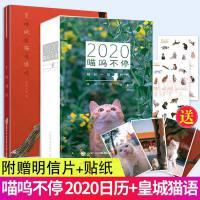 皇城猫语 喵呜不停主题手账&喵呜不停 2020日历(彩印) 共2册