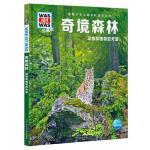 什么是什么・珍藏版(第3辑):奇境森林