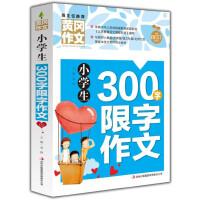 黄冈作文-小学生300字限字作文
