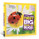 顺丰发货 英文原版 美国国家地理 昆虫 National Geographic Little Kids First B