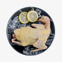 农谣 乳鸽 新鲜鸽子肉 整只装 杀前约600g 农家散养
