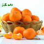 浙江衢州�崭� 新鲜桔子橘子丑柑净重5斤装