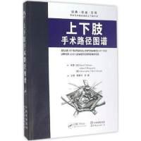 上下肢手术路径图谱 瑞奥 世界图书出版公司 9787519204846