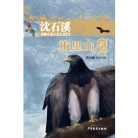 沈石溪动物小说大party:梅里山鹰
