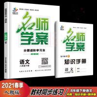 2021版 名师学案 语文8八年级下册 分层进阶学习法附手册+试卷+答案