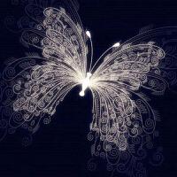 十字绣满钻浪漫蝴蝶点画结婚款5D客厅画