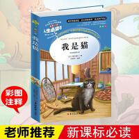 正版人生必读书 我是猫 夏目漱石导读注释详解名师点评 彩图不注音(美绘版)语文新课标必读中小学生