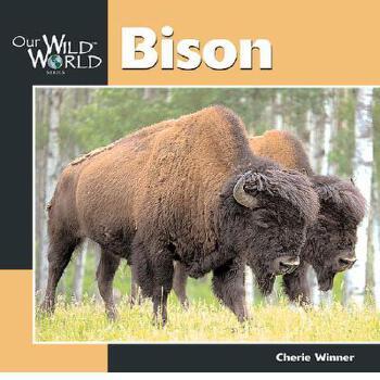 【预订】Bison 预订商品,需要1-3个月发货,非质量问题不接受退换货。