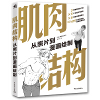 肌肉结构:从照片到漫画绘制