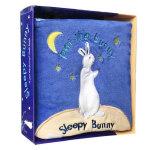 【顺丰速运】英文原版绘本 Sleepy Bunny 睡着的小兔子Pat the Bunny拍拍小兔子Cloth Boo