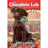 学乐 巧克力实验室1The Chocolate Lab 1 进口原版6-8-10-12岁少儿童文学睡前故事书小学生三四