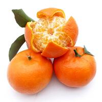 【包邮】广西武鸣沃柑5斤装单果60-75mm 柑橘橙子新鲜水果