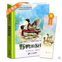 野鸭的友情/椋鸠十动物小说爱藏本 儿童文学 6~12岁小学生课外阅读书籍 青少年读物 正版
