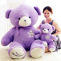 可爱薰衣草熊公仔大号抱抱熊毛绒玩具抱枕娃娃生日礼物女生