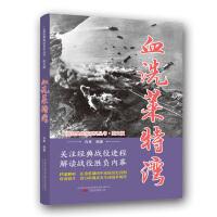 二战经典战役系列丛书:血洗莱特湾(图文版)