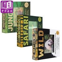 【中商原版】光与影视觉书系列3册 英文原版 A Photicular Book 会动的3D图片书 纽约时报畅销书