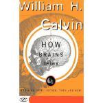 【预订】How Brains Think: Evolving Intelligence, Then and