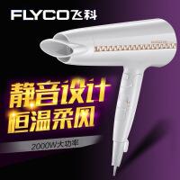 飞科大功率吹风机家用发廊电吹风FH6228负离子冷热风吹风筒2000W可折叠酒店吹风机