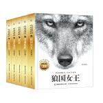 沈石溪动物小说 经典爱藏版(5册)