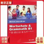 德语词汇语法训练B1 安娜丽・比利娜(Anneli Billina) 9787560885148 同济大学出版社 新华